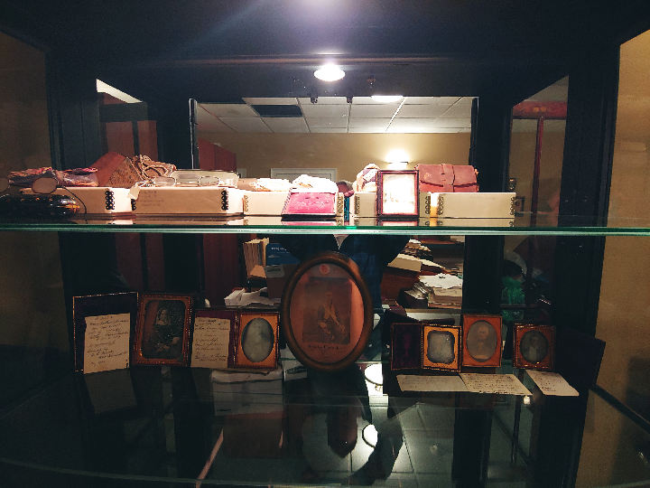 Museum Display Cabinet: Inside view
